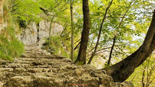 percorso del pellegrino o della speranza veneto