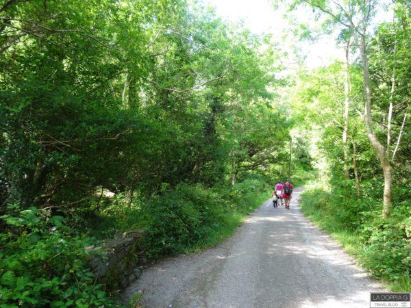 killarney national park percorsi a piedi o in bicicletta
