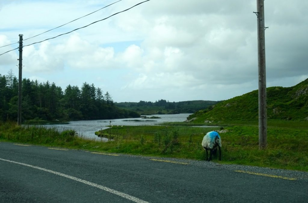 Irlanda Connemara miti e leggende di Yeats