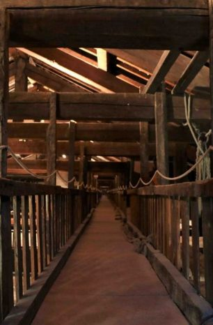 Visita al sottotetto della Basilica di San Petronio | BOLOGNA