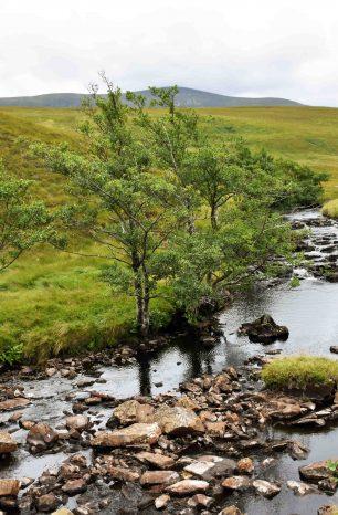 SCOZIA | Le immense Highlands del nord