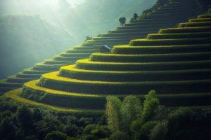 cosa vedere e dove andare in Thailandia